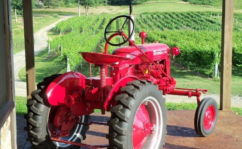 Vineyards - Murphy, NC - #18